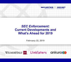 Feb. 22 Webcast: SEC Enforcement — Current Developments and What's Ahead for 2019